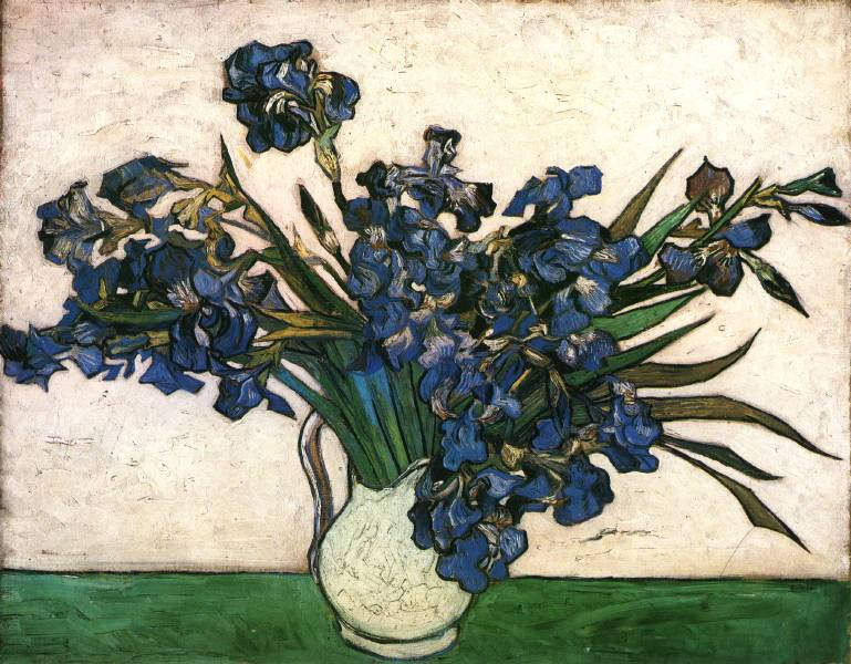 http://vangogh-world.ru/other/irises-pink-green.jpg